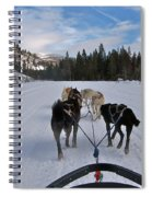 Riding Through The Colorado Snow On A Husky Pulled Sled Spiral Notebook