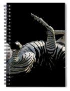 Frolicking Zebra On Black Spiral Notebook