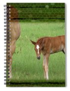 New To The World Spiral Notebook