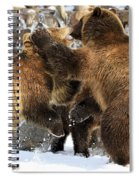 New Years Celebration Spiral Notebook