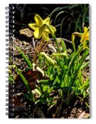 New Yellow Flowers 1 Spiral Notebook