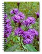 New York Ironweed Wildflower - Vernonia Noveboracensis Spiral Notebook