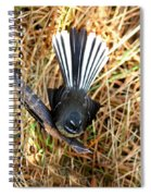 New Zealand Fantail Spiral Notebook