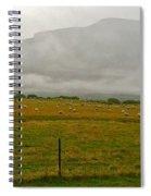 New Zealand Sheep Farm Spiral Notebook