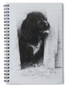 Newfoundland Puppy Spiral Notebook