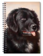 Newfoundland Spiral Notebook