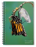 Newly-emerged Monarch Butterfly Spiral Notebook