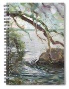 Niagara River Side Spiral Notebook