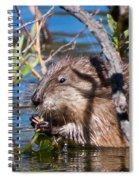 Nibbling Muskrat Spiral Notebook