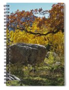 Nice Setting For A Rock Spiral Notebook