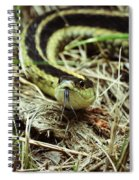 Nice To Sssssee You Spiral Notebook