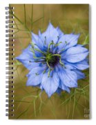 Nigella Damascena Spiral Notebook