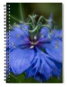 Nigella Damascena Spiral Notebook