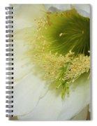 Night Blooming Cereus Cactus Spiral Notebook