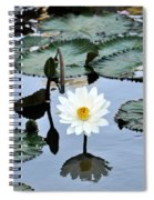 #night Blooming Water Lily Spiral Notebook