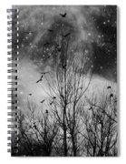 Burst Of The Night Flight Spiral Notebook