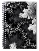 Night Frost Spiral Notebook