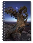 Night Guardian Of The Valley Spiral Notebook