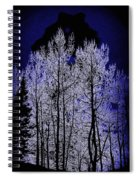 Night Of The Wolf Spiral Notebook