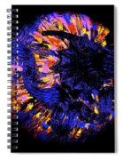 Night Pumpkin Iridescence Spiral Notebook