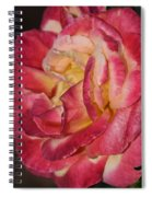 Night Rose Spiral Notebook