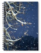 Night Snow Spiral Notebook