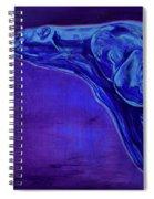 Night Swimmer Spiral Notebook