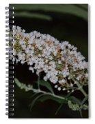 Night Whites Spiral Notebook