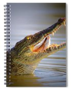 Nile Crocodile Swollowing Fish Spiral Notebook