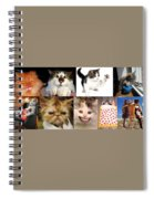 Nine Lives And Mood Swings Spiral Notebook