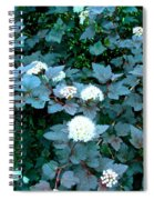 Ninebark Beauty Spiral Notebook