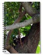 Nispero Tree Spiral Notebook