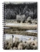 Nisqually Nest Boxes Spiral Notebook