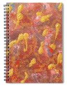 No 27 Brocade Spiral Notebook