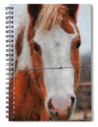 No Fences Spiral Notebook