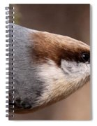 No Hands - Fayetteville - Nuthatch Spiral Notebook