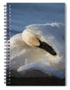 Swan Tuck Spiral Notebook