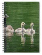 Geese Family Spiral Notebook