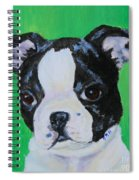 No Trouble Spiral Notebook