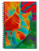 Noam Spiral Notebook