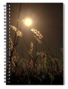 Nocturnal Glow Spiral Notebook