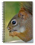 Nom Nom Squirrel  Spiral Notebook