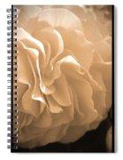 Non-stop Begonia Triptych Spiral Notebook