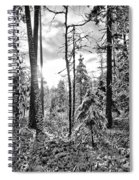 Noon Spiral Notebook