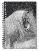 Nor Easter Spiral Notebook