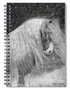 Nor Easter Spiral Notebook
