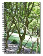 Norfolk Botanical Garden 7 Spiral Notebook