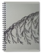 Norfolk Pine Spiral Notebook