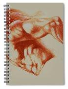 North American Minotaur Red Sketch Spiral Notebook