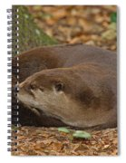 North American River Otter Spiral Notebook